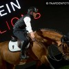 stallion show + Auction Top Ten - Tal Milstein