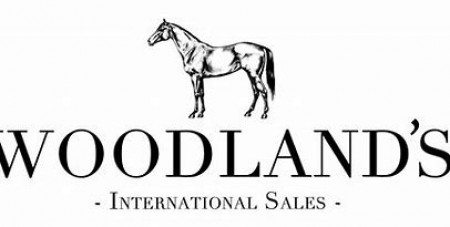 CSI2*1*YH Lier 17-19 October Woodlands Internatinoal Sales